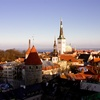 Документы для оформления визы в Эстонию